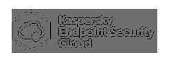 Kaspersky End Point